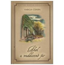 Varga Csaba: Ahol a vaddisznó jár