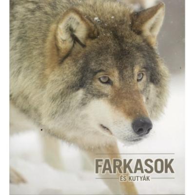 Kovács Zsolt: Farkasok és kutyák