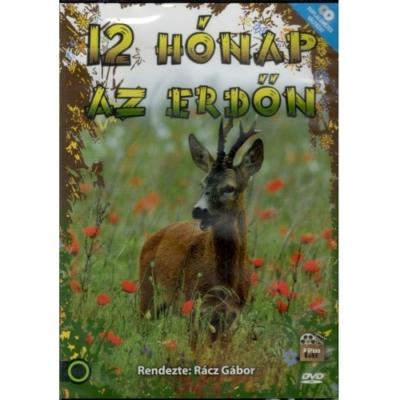 Rácz Gábor: Tizenkét hónap az erdőn DVD